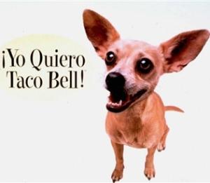 Yo Quiero Taco Bell!