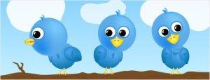 tweeties-openeyes