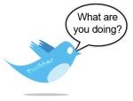 Twitter-Bird-Tweet