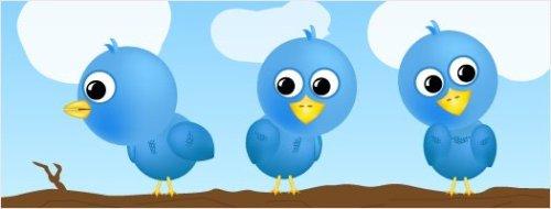 Tweet! Tweet! Tweet!